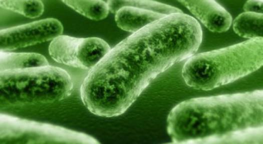 Bulaşıcı hastalıklar ve korunma yolları